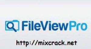 Fileviewpro keygen
